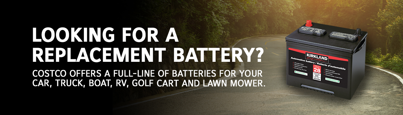 Looking for a replacement battery?